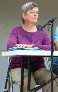 Fullmäktigeledamot Christina Hamnö deltog i Elmstadalens politikerpanel